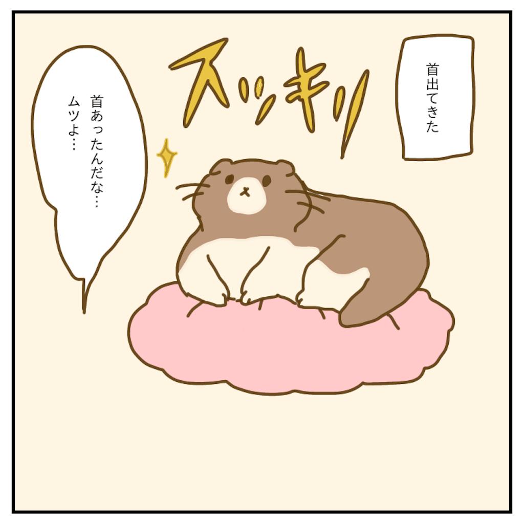 f:id:chiisakiobu:20200418220033p:image