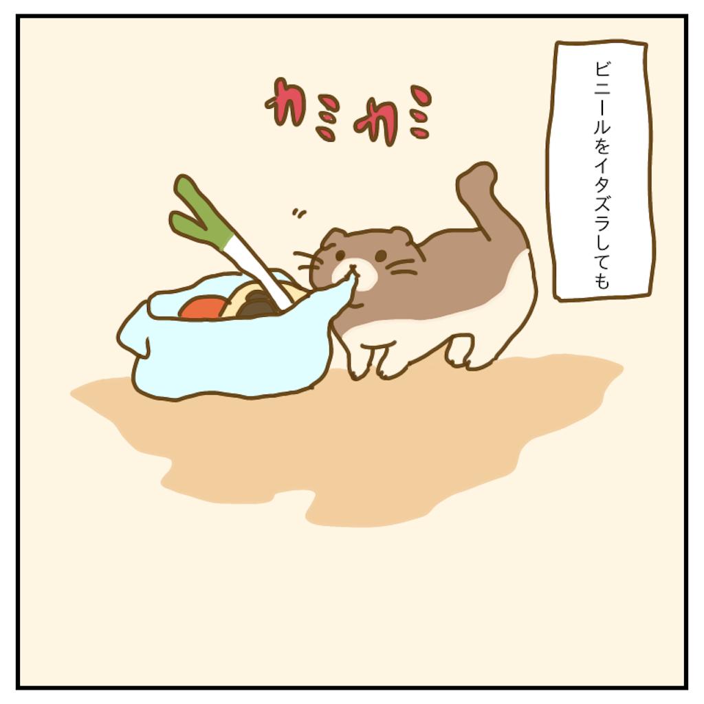 f:id:chiisakiobu:20200501223314p:image