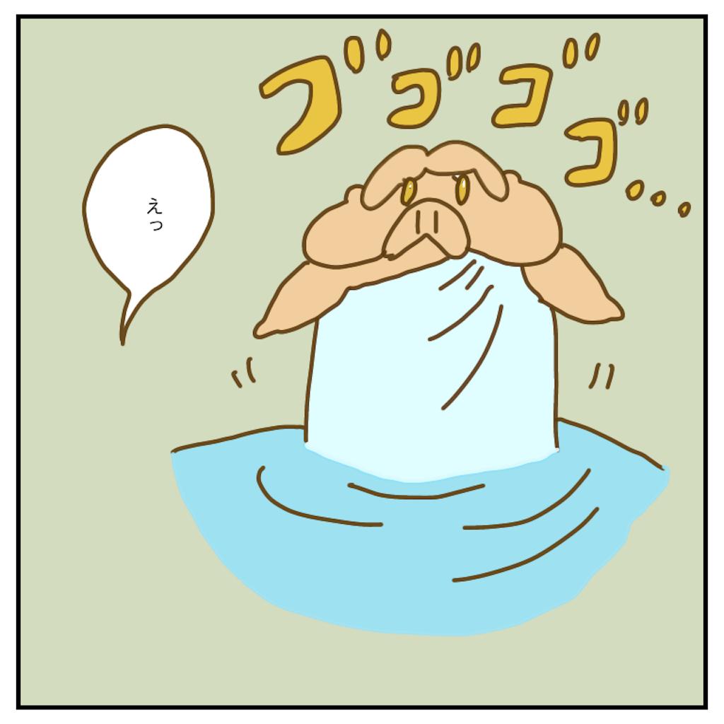 f:id:chiisakiobu:20200508214154p:image