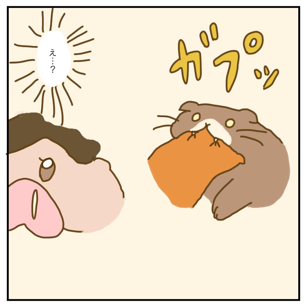 f:id:chiisakiobu:20200512224047p:image