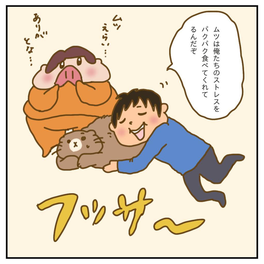 f:id:chiisakiobu:20200518223415p:image