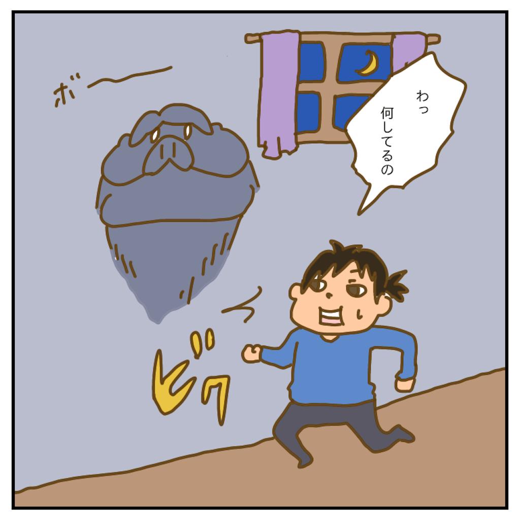 f:id:chiisakiobu:20200524211936p:image