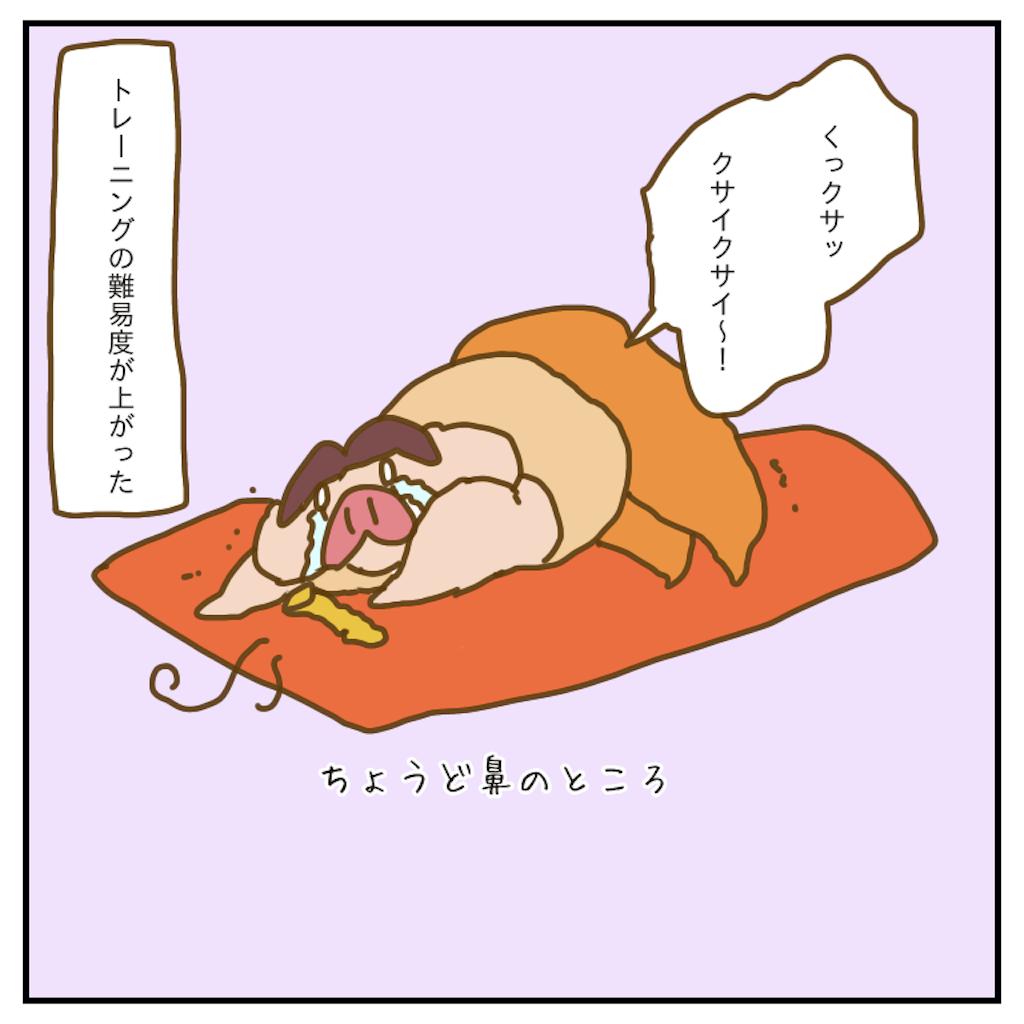 f:id:chiisakiobu:20200525221044p:image