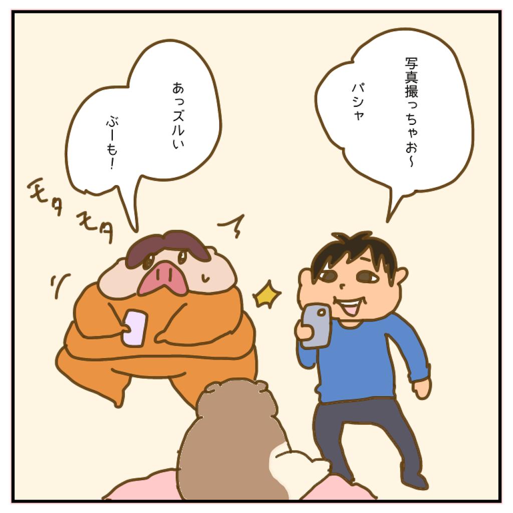 f:id:chiisakiobu:20200529214556p:image