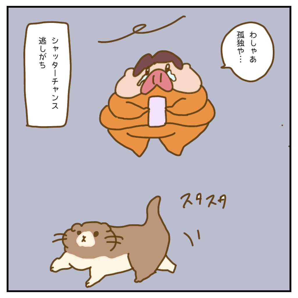 f:id:chiisakiobu:20200529214623p:image