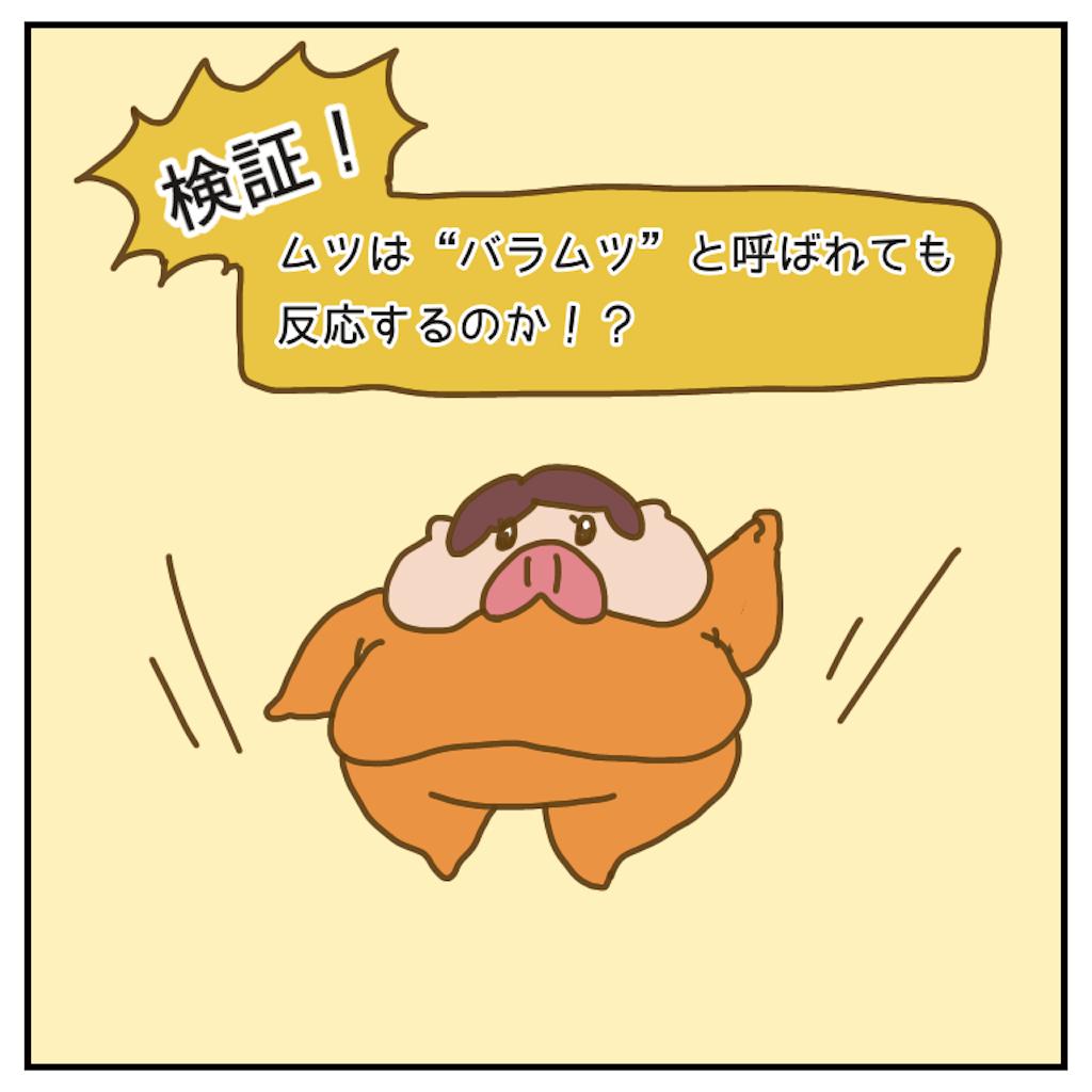 f:id:chiisakiobu:20200602215827p:image