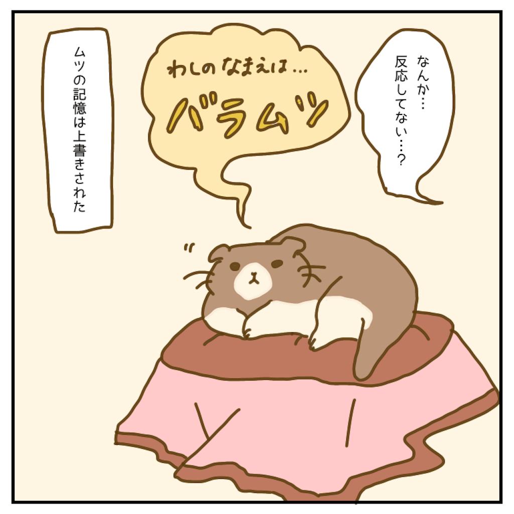 f:id:chiisakiobu:20200602220054p:image