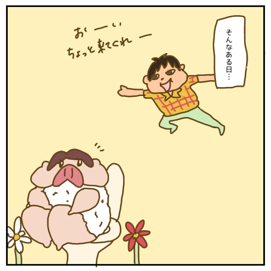 f:id:chiisakiobu:20200611230507p:image