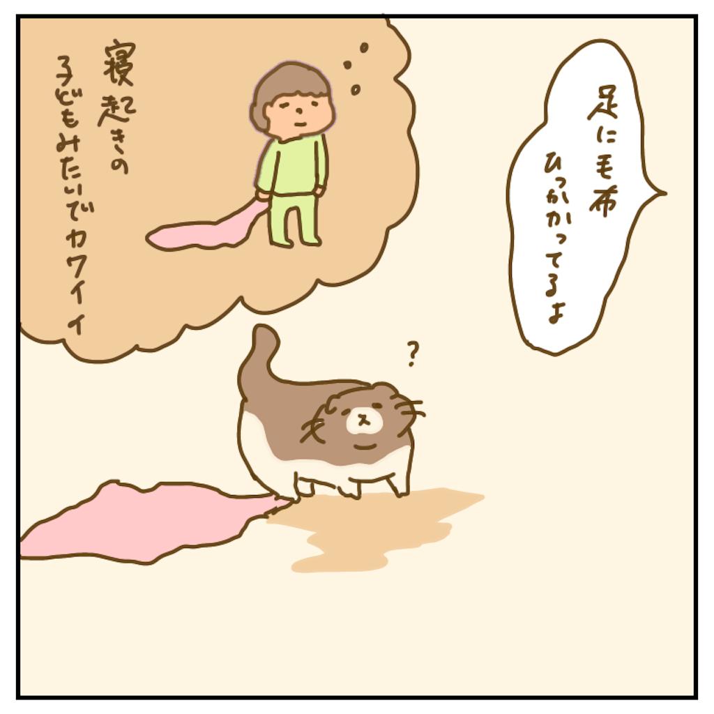 f:id:chiisakiobu:20200614201243p:image