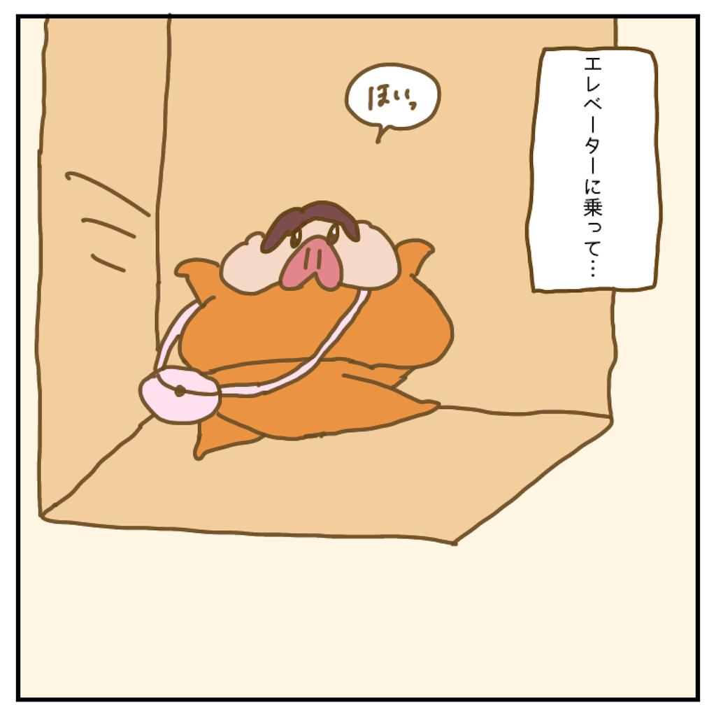 f:id:chiisakiobu:20200711210911p:image