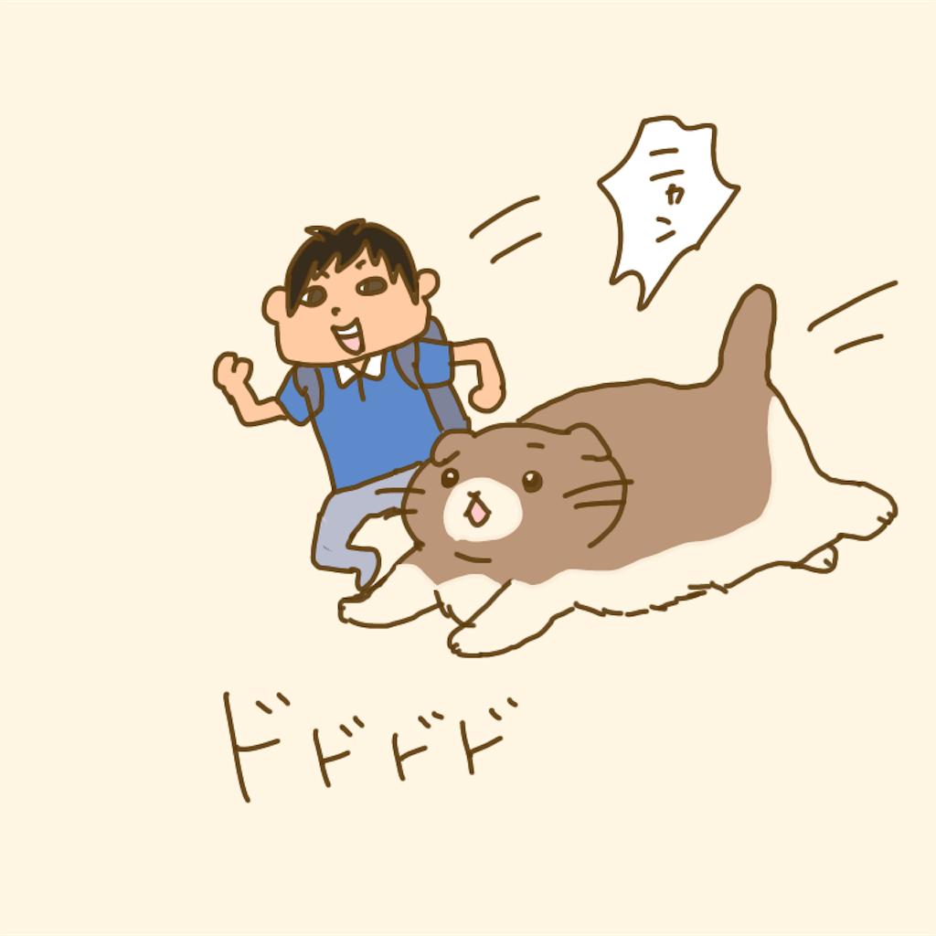 f:id:chiisakiobu:20200712222121p:image