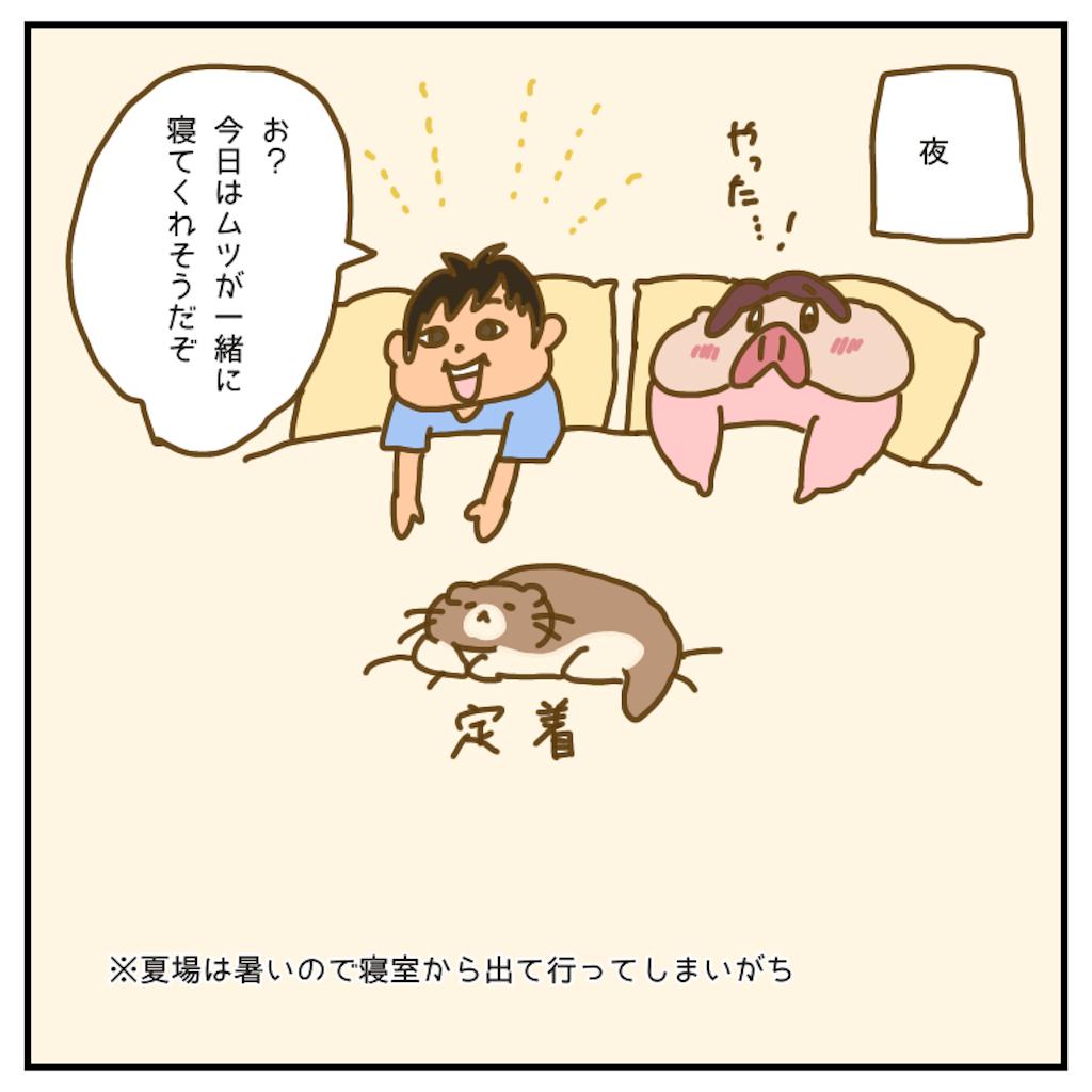 f:id:chiisakiobu:20200716202612p:image