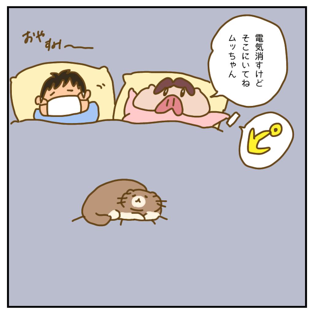 f:id:chiisakiobu:20200716202622p:image