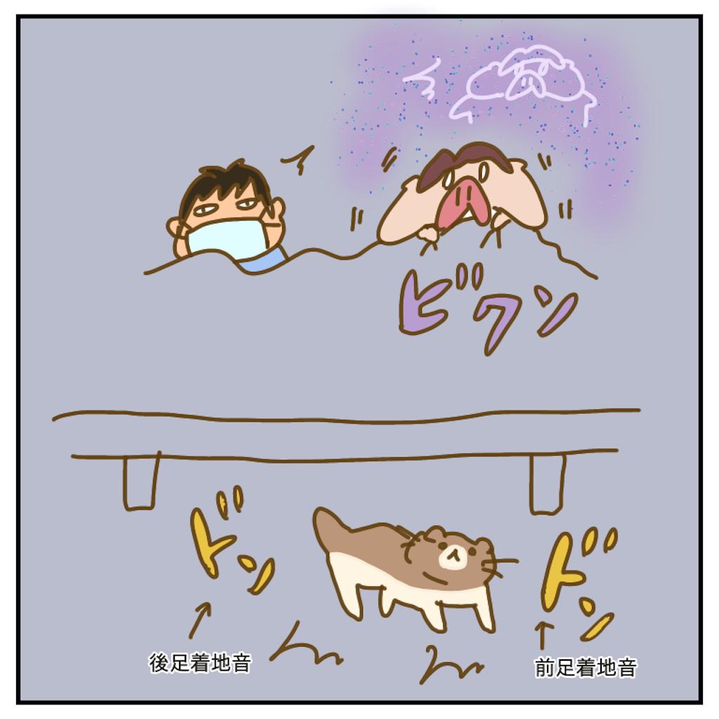 f:id:chiisakiobu:20200716202732p:image