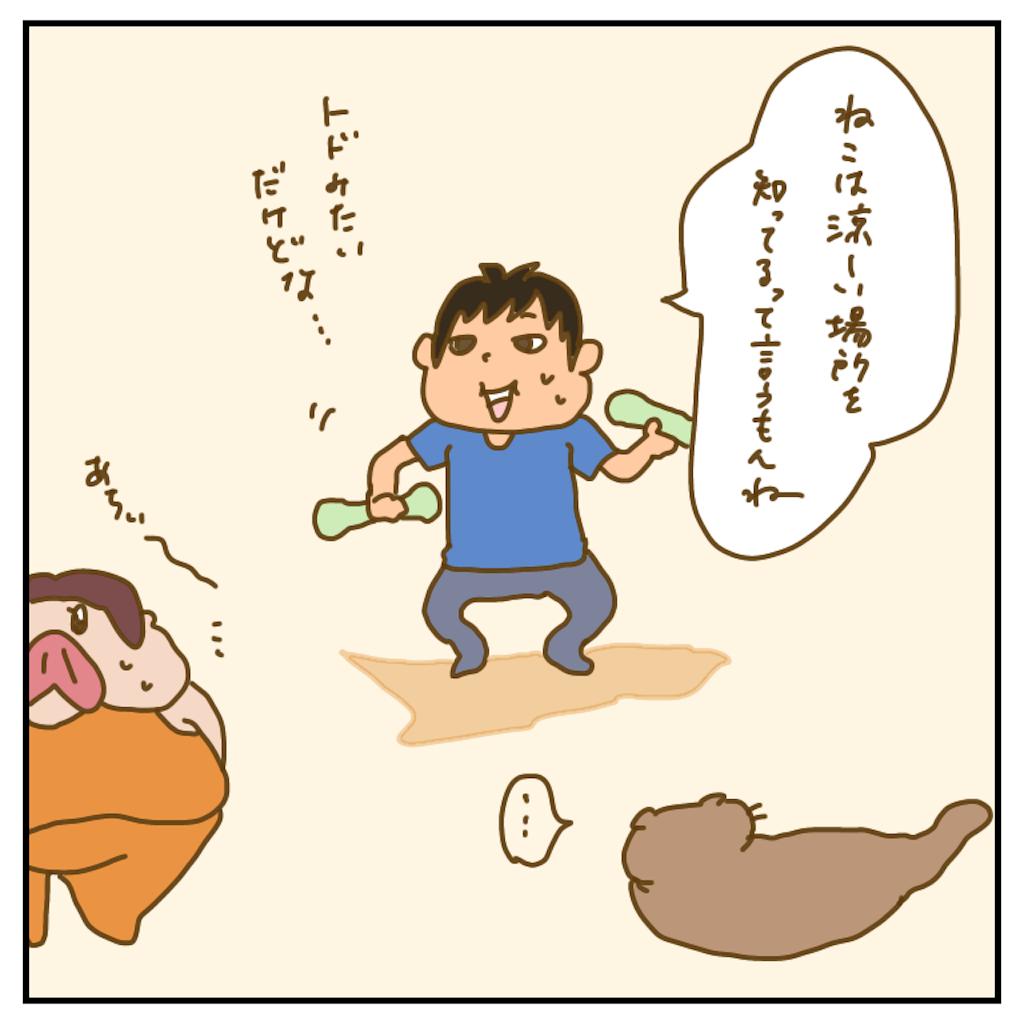 f:id:chiisakiobu:20200718195706p:image