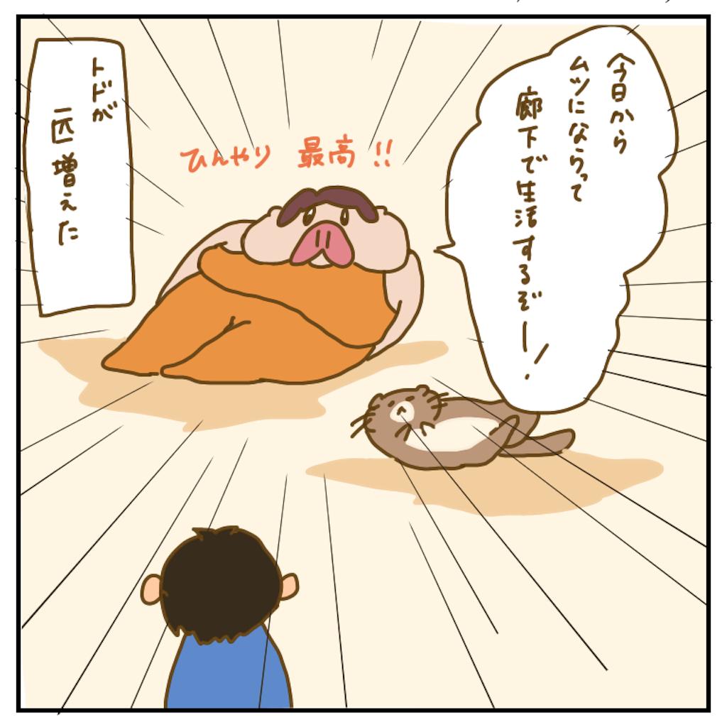 f:id:chiisakiobu:20200718195725p:image