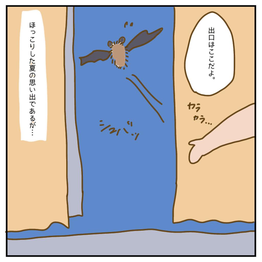 f:id:chiisakiobu:20200902221323p:image