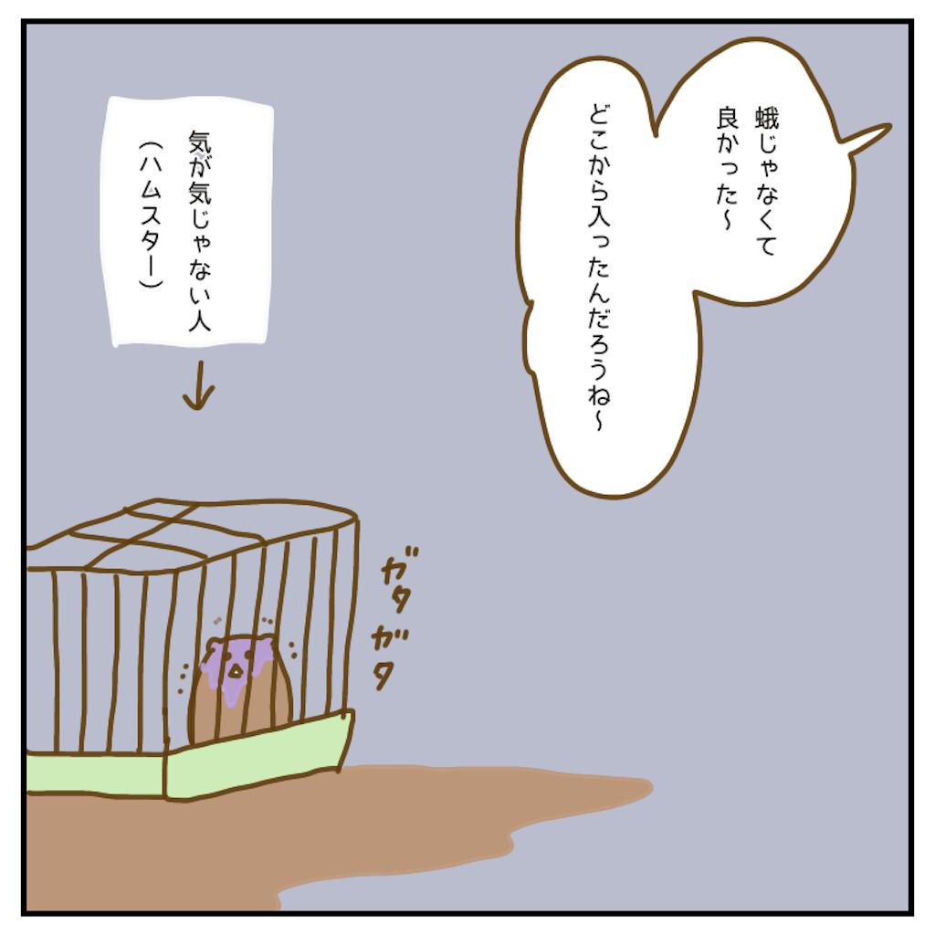 f:id:chiisakiobu:20200902221334p:image