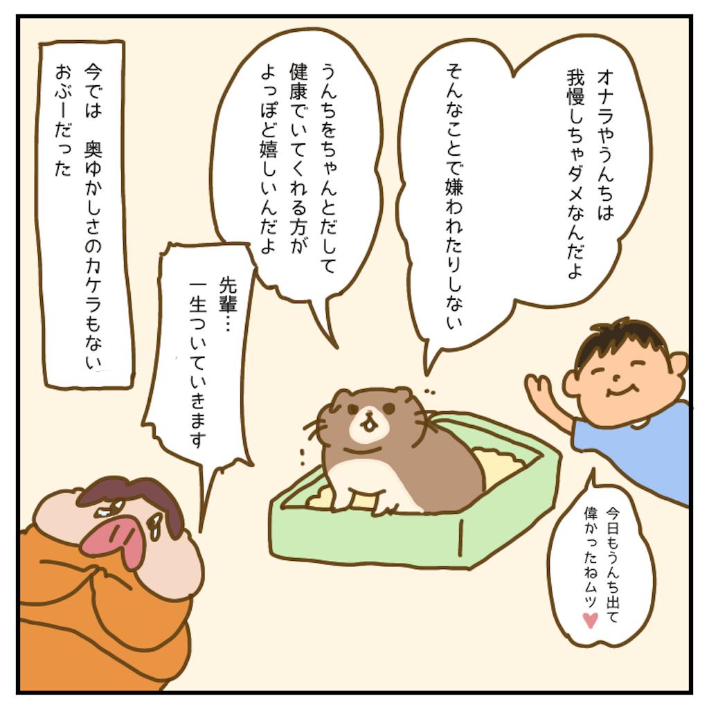 f:id:chiisakiobu:20200903223155p:image