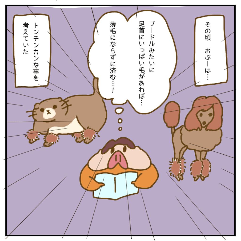 f:id:chiisakiobu:20200905212441p:image