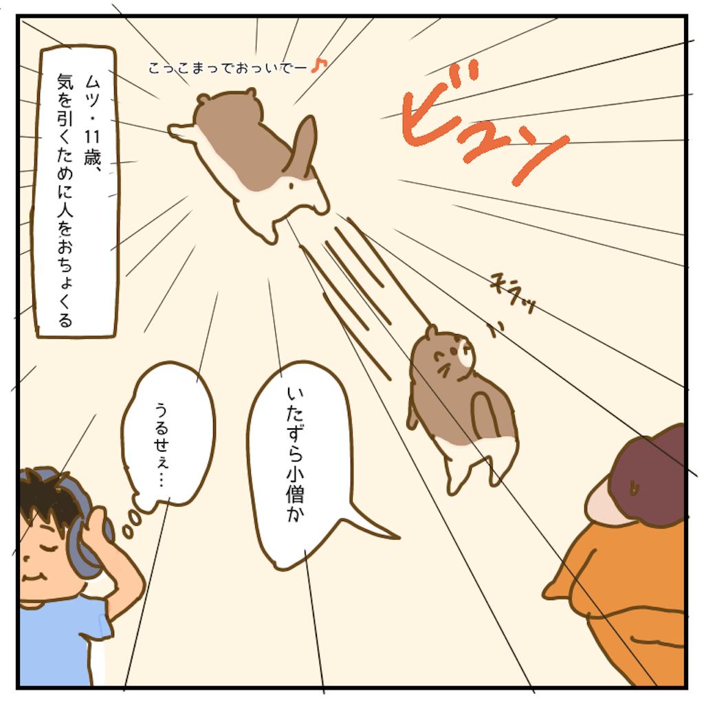 f:id:chiisakiobu:20200908221013p:image