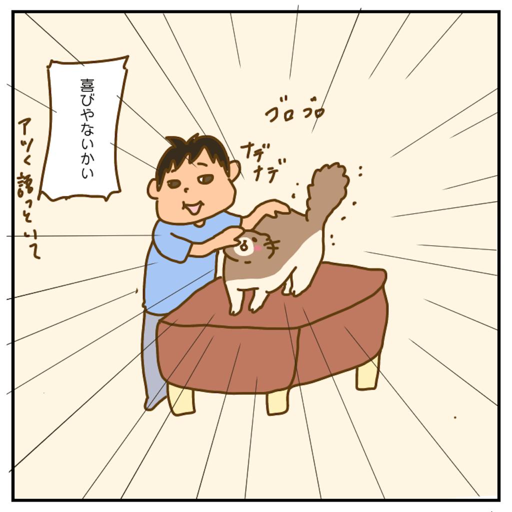 f:id:chiisakiobu:20200915221410p:image