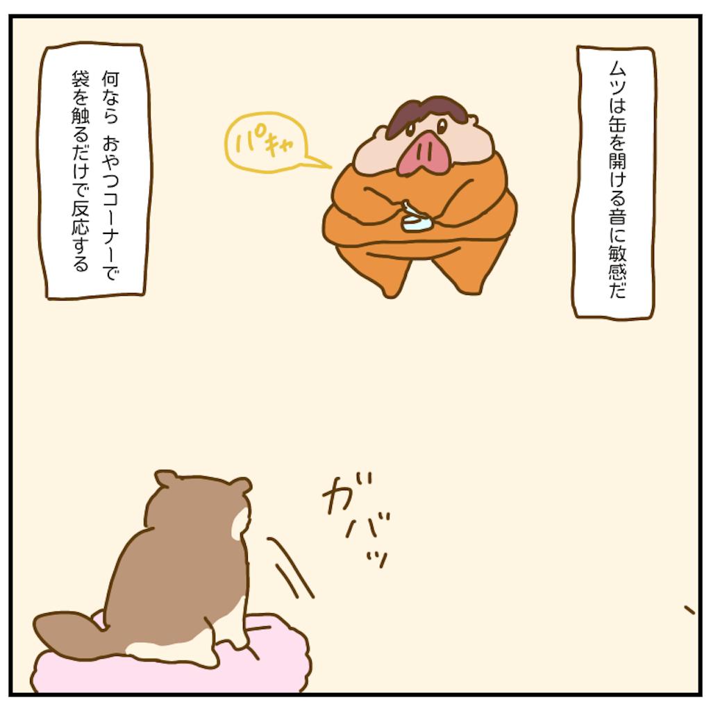 f:id:chiisakiobu:20200920211741p:image