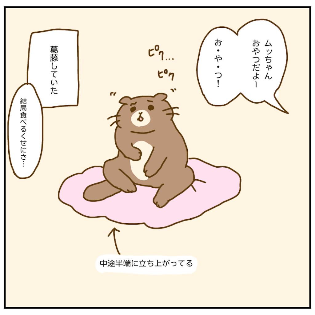 f:id:chiisakiobu:20200920211800p:image