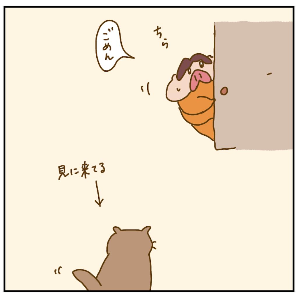 f:id:chiisakiobu:20200926202034p:image