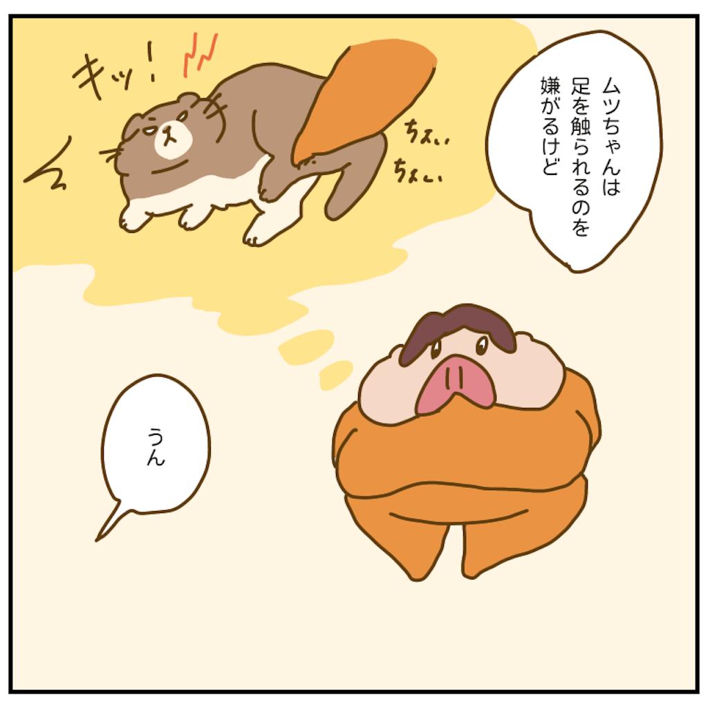 f:id:chiisakiobu:20201003144505p:image
