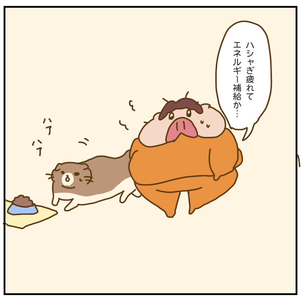 f:id:chiisakiobu:20201006215027p:image