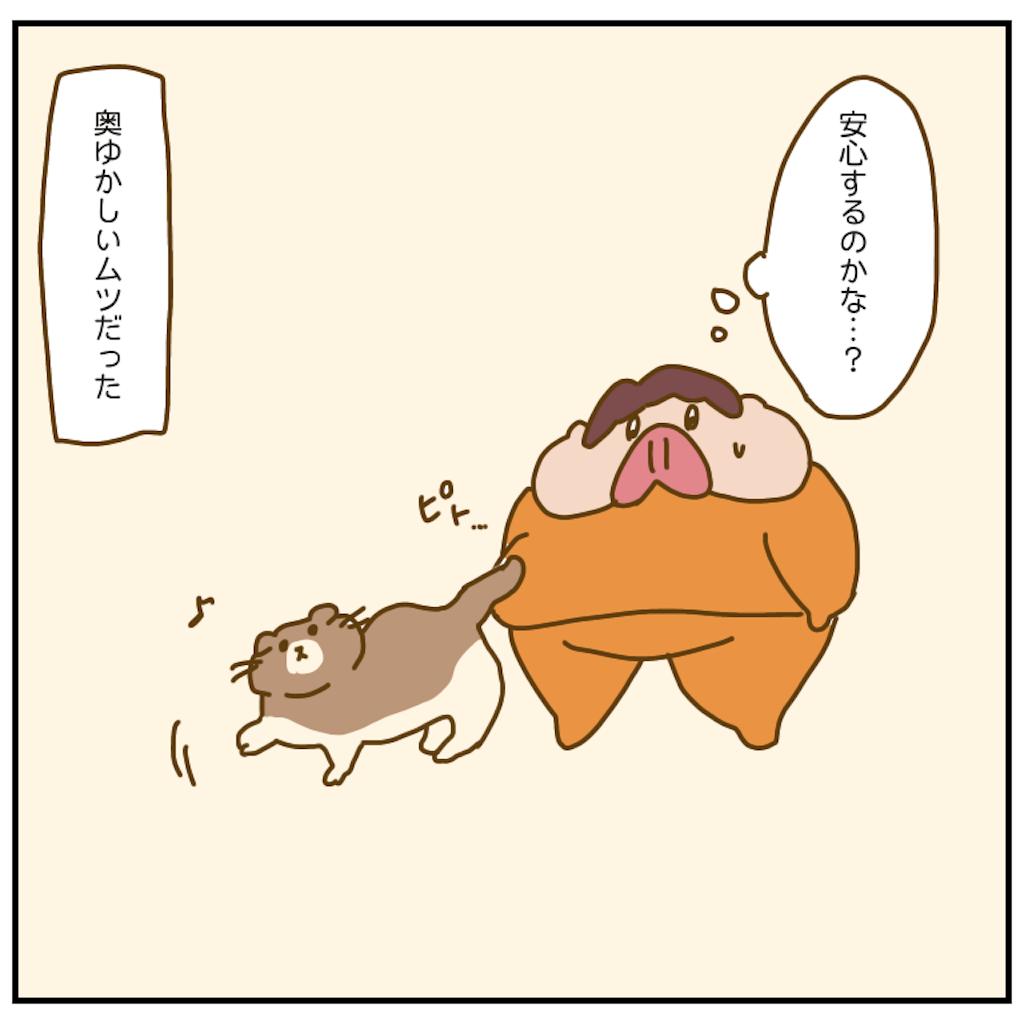 f:id:chiisakiobu:20201006215139p:image