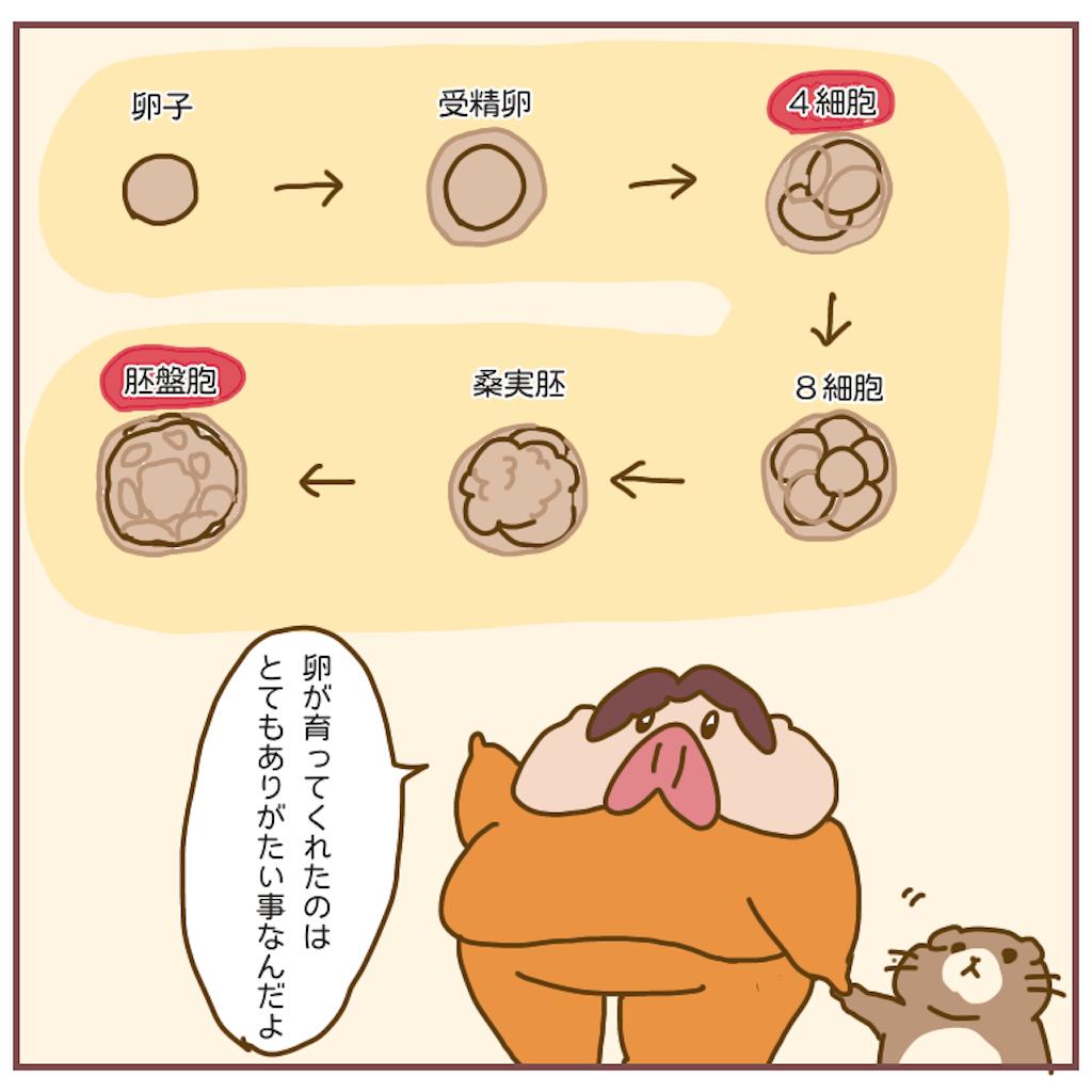 f:id:chiisakiobu:20201008172615p:image