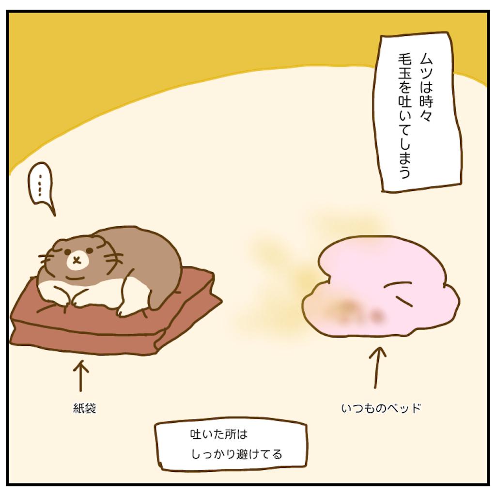 f:id:chiisakiobu:20201012175757p:image