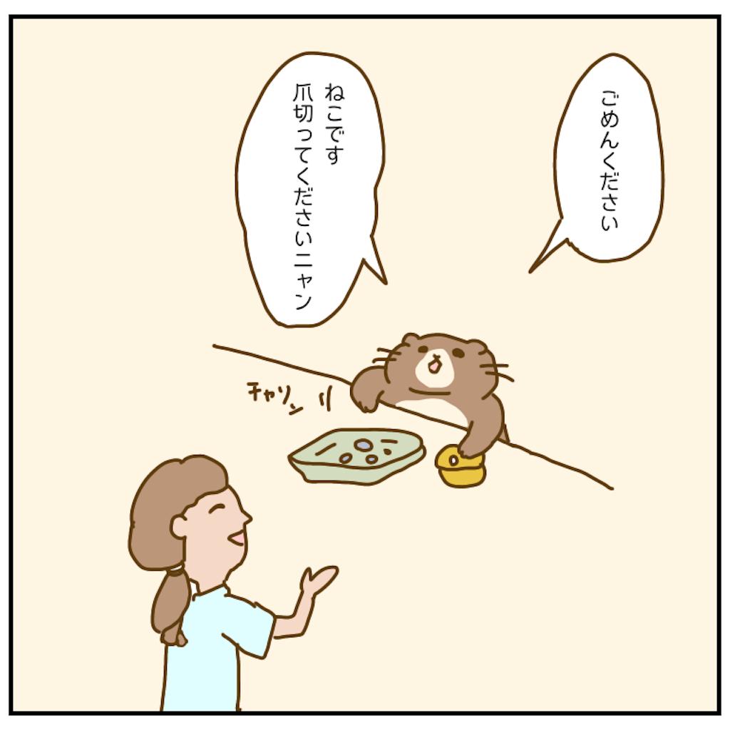 f:id:chiisakiobu:20201024212853p:image