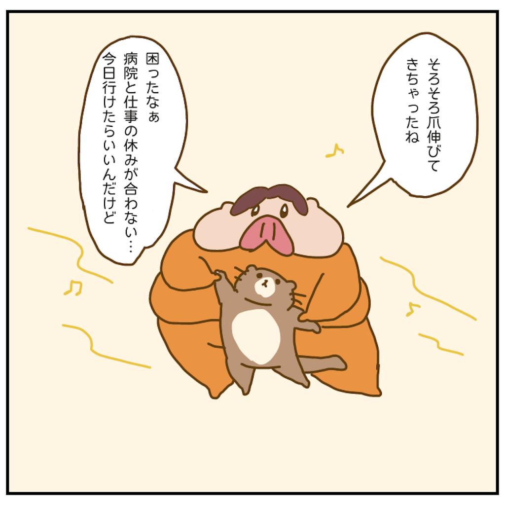 f:id:chiisakiobu:20201024214218p:image