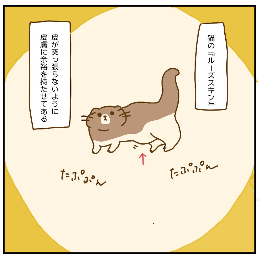 f:id:chiisakiobu:20201107200614p:image