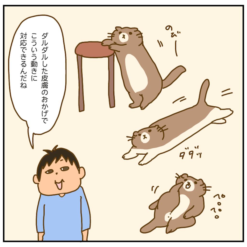 f:id:chiisakiobu:20201107200635p:image