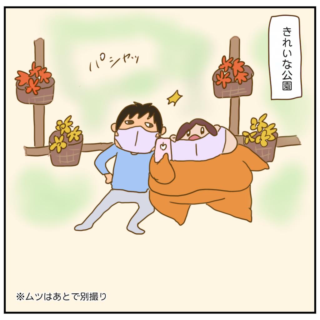 f:id:chiisakiobu:20201117210015p:image