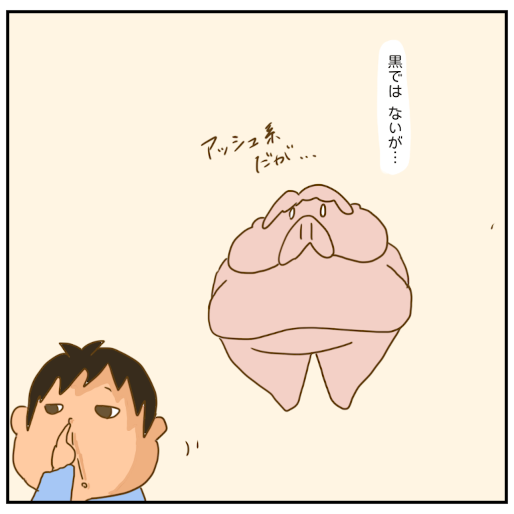 f:id:chiisakiobu:20201118210029p:image