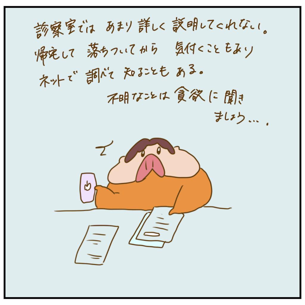 f:id:chiisakiobu:20201122223738p:image