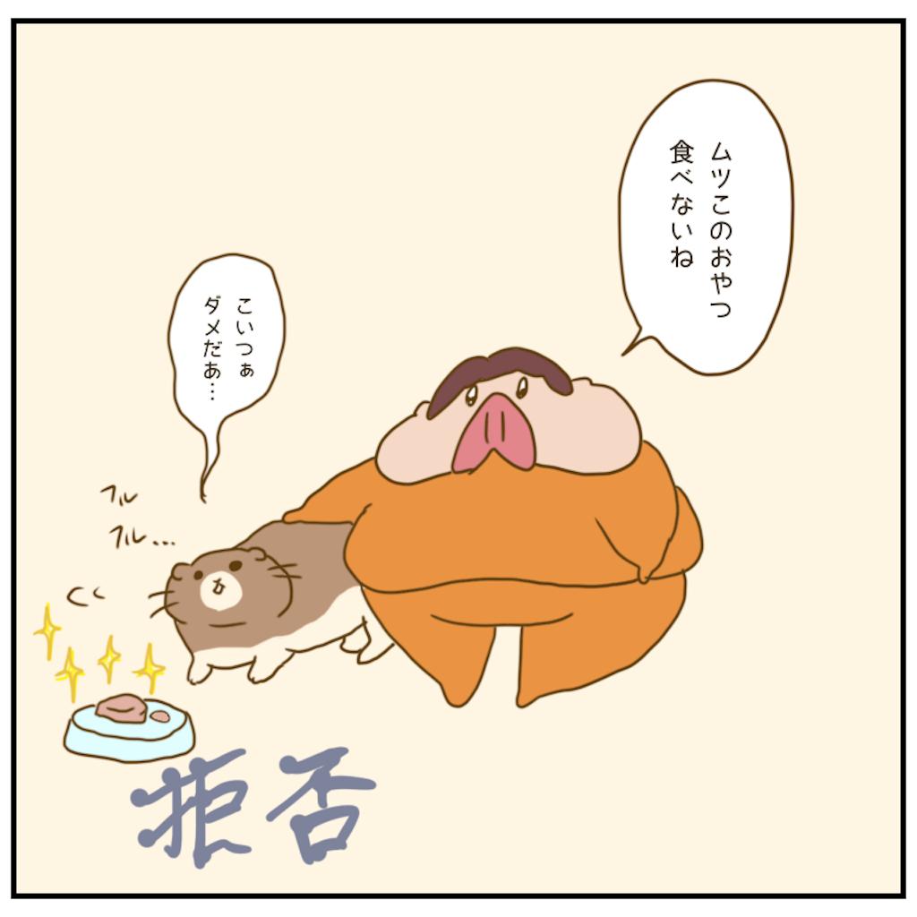 f:id:chiisakiobu:20201204003428p:image