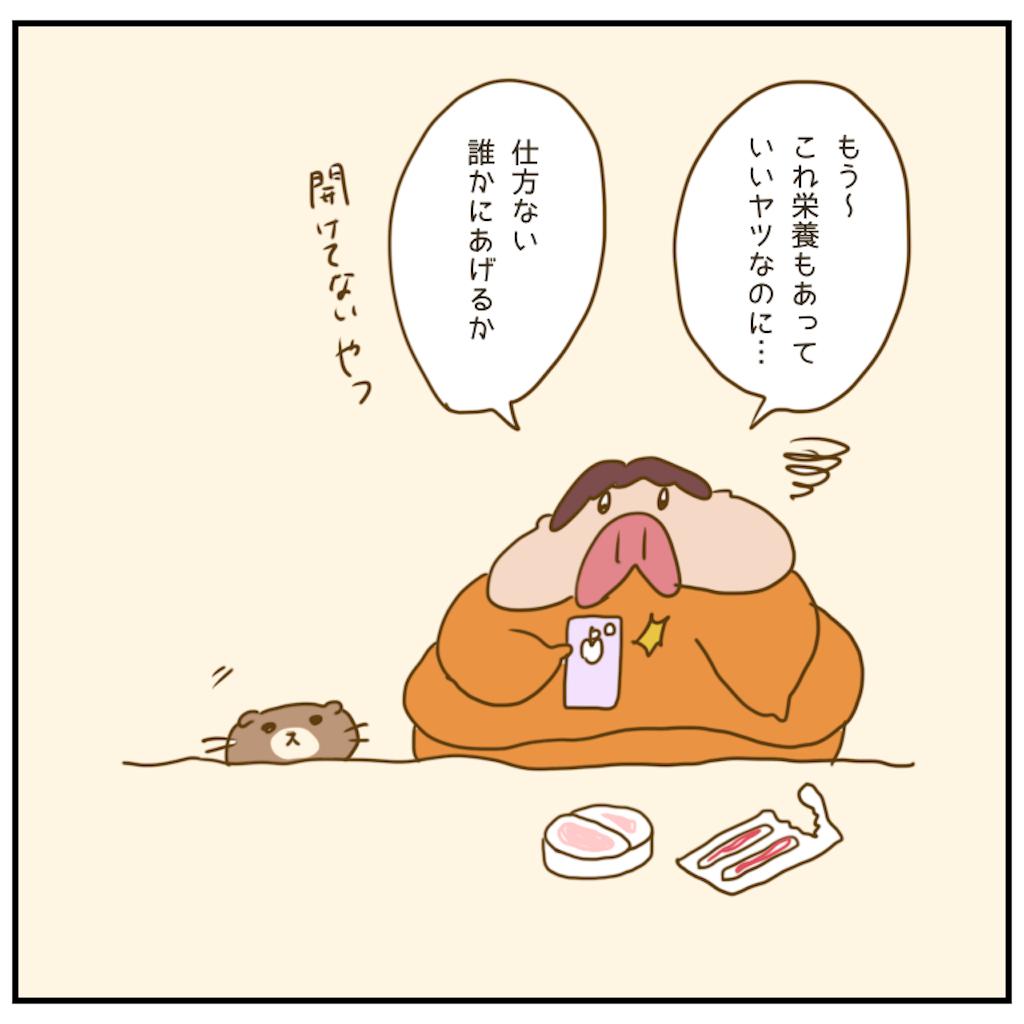 f:id:chiisakiobu:20201204003448p:image