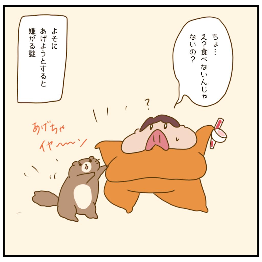 f:id:chiisakiobu:20201204003503p:image