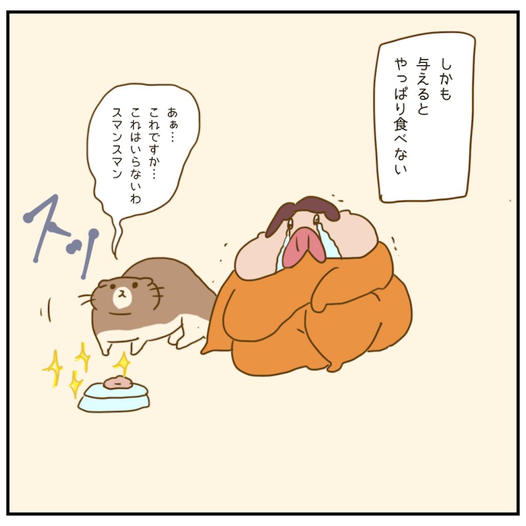 f:id:chiisakiobu:20201204003511p:image