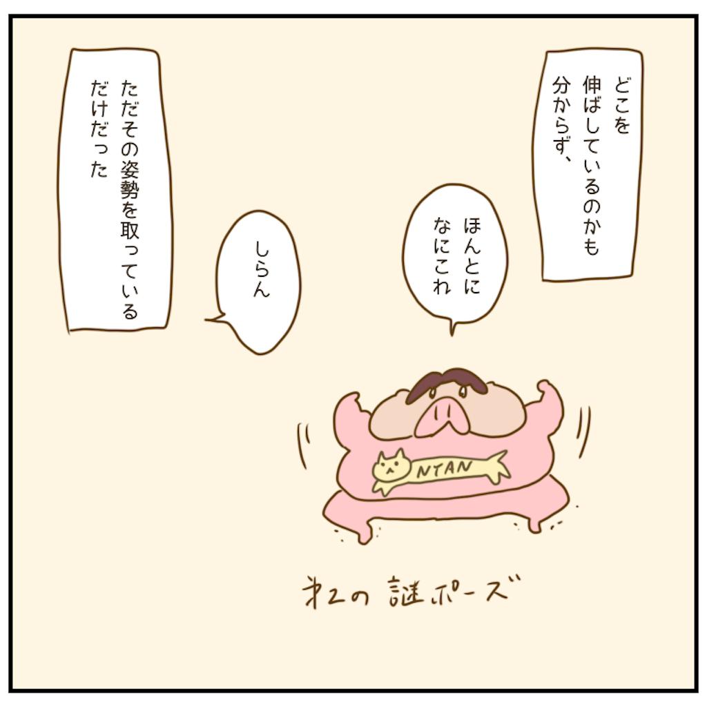f:id:chiisakiobu:20201208204945p:image