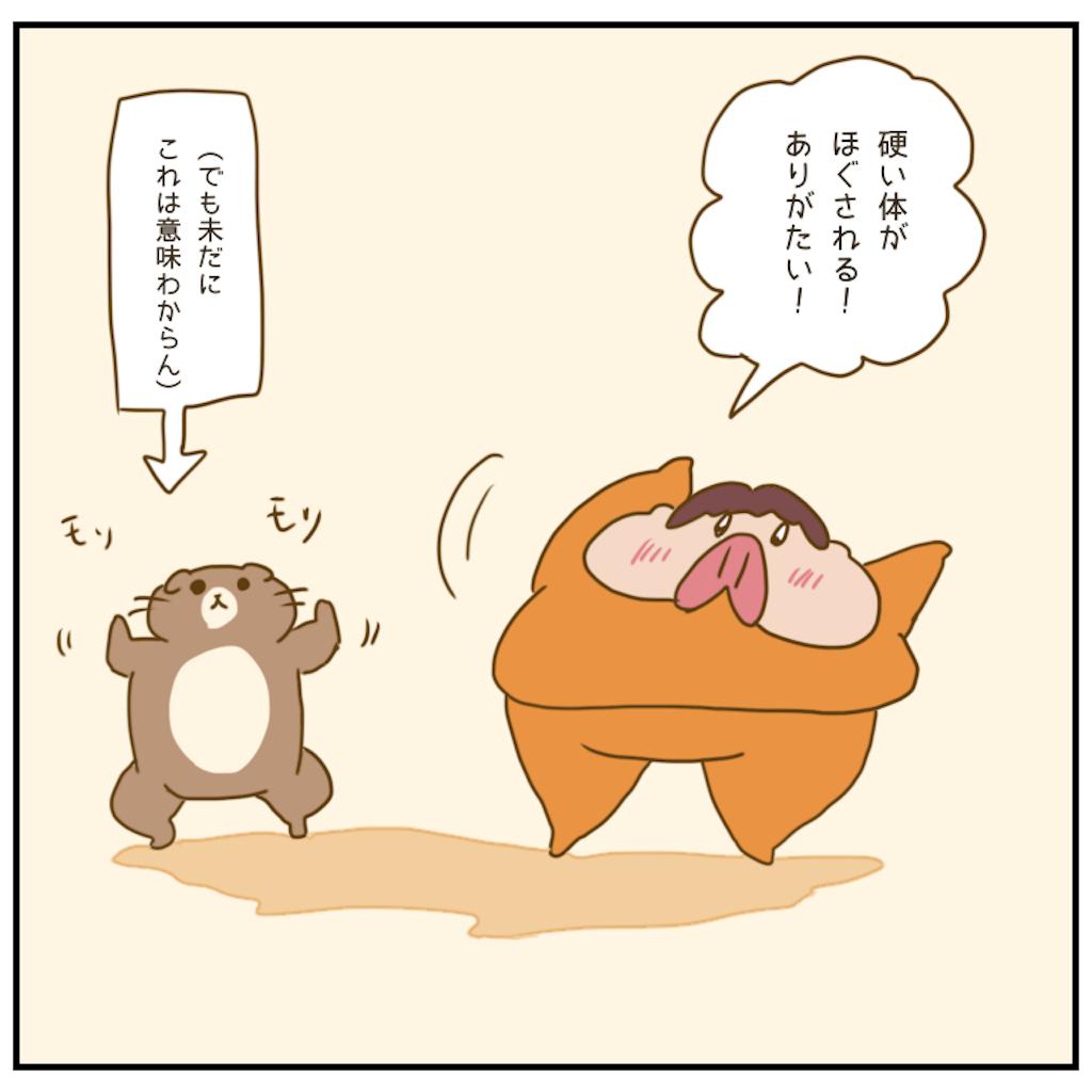 f:id:chiisakiobu:20201208205004p:image