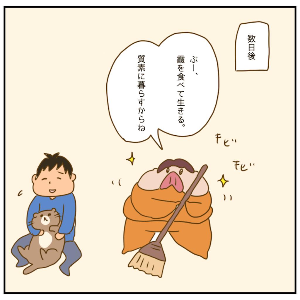 f:id:chiisakiobu:20201209221236p:image