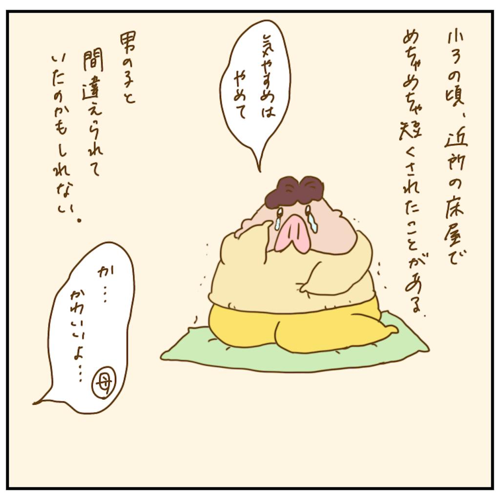 f:id:chiisakiobu:20201211195220p:image