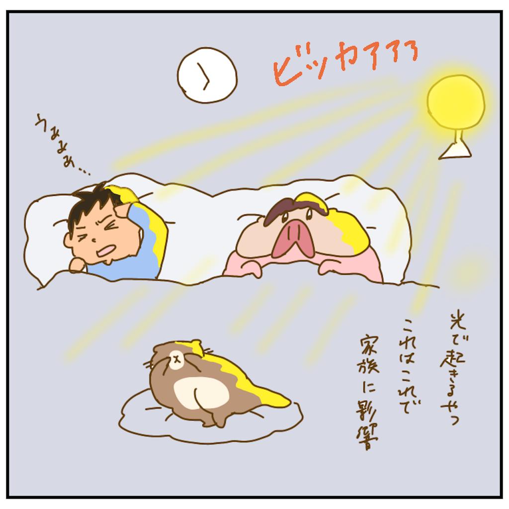 f:id:chiisakiobu:20201213164652p:image